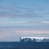 Iceberg / Martin Renters