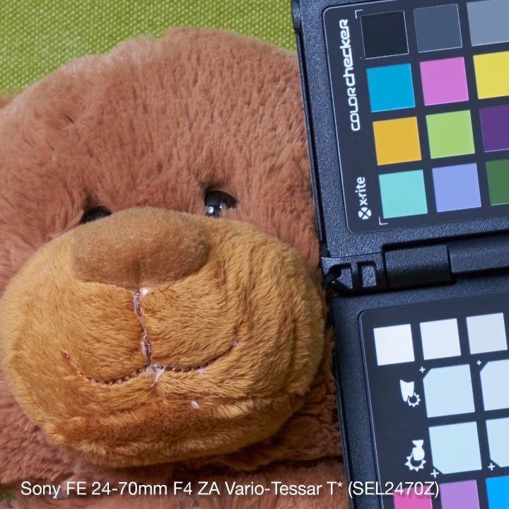 Sony-FE24-70-f8-crop